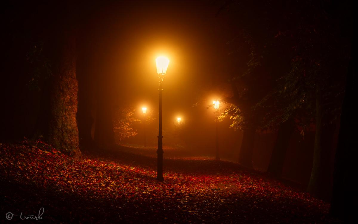 Red Haze by tvurk