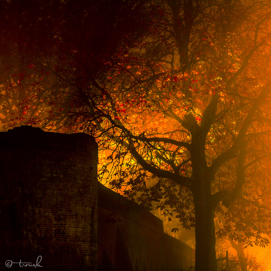 Fire on the Wall by tvurk