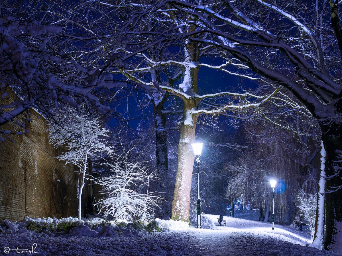 Winter Blues by tvurk