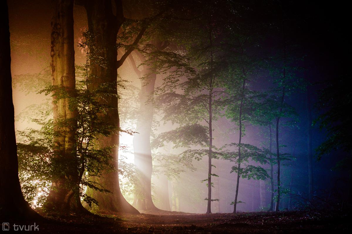 Streetlight Sorcery by tvurk