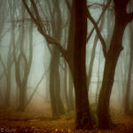 Whispers in the Gloom