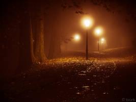 Amber Autumn by tvurk