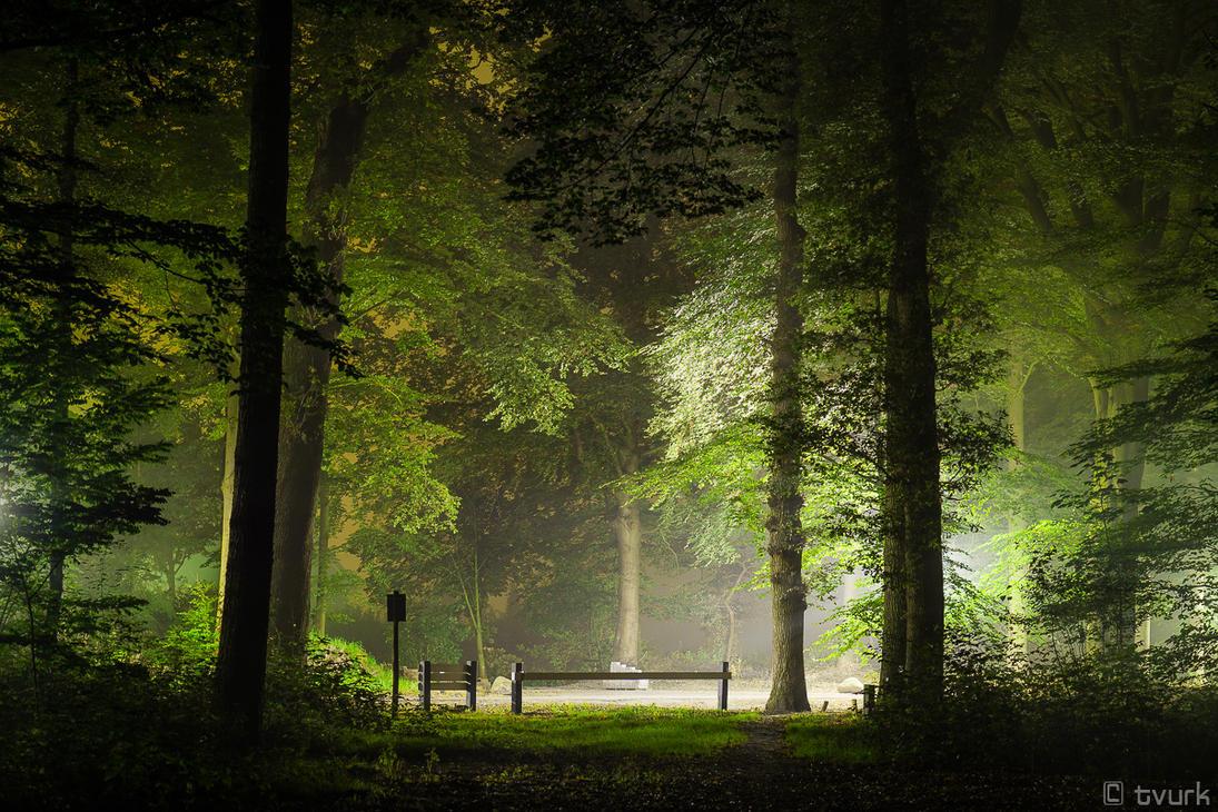 Verdant Nights by tvurk