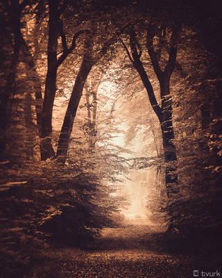 Miles Away by tvurk