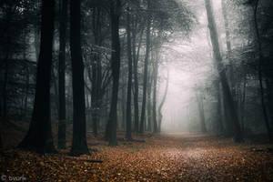 Dark Fall by tvurk