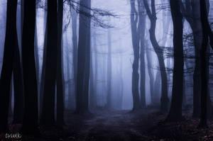 Blue Myth by tvurk