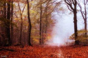 Spicy Autumn by tvurk