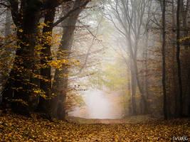 Autumn Adventure by tvurk