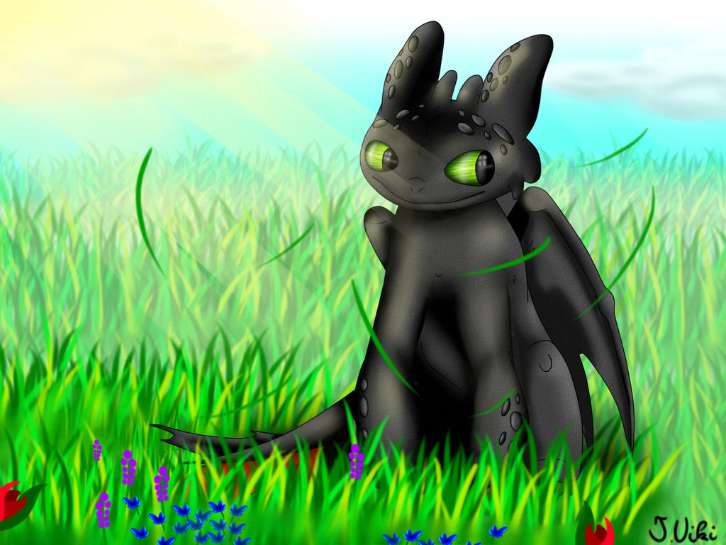 Toothless by TothViki