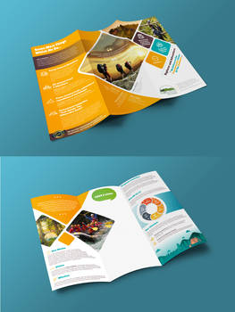 Trifold Travel Agency Brochure