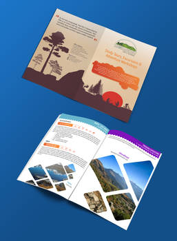 Bifold Brochure for Travel Agency