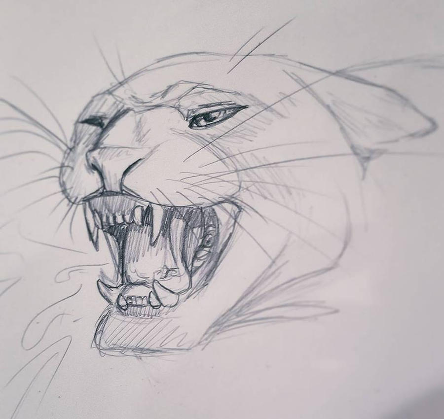 Pencil sketch 01 panther by creativetouchart