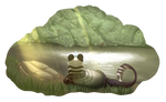 [ArcaneZoo] || Gathering - Noon Pondwatching  ||