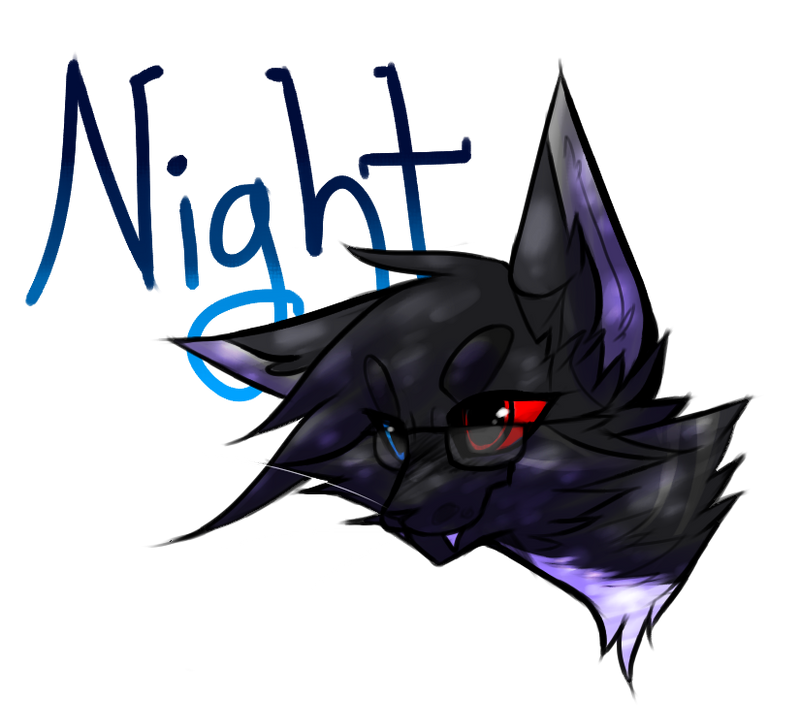 Nightbutt's Profile Picture