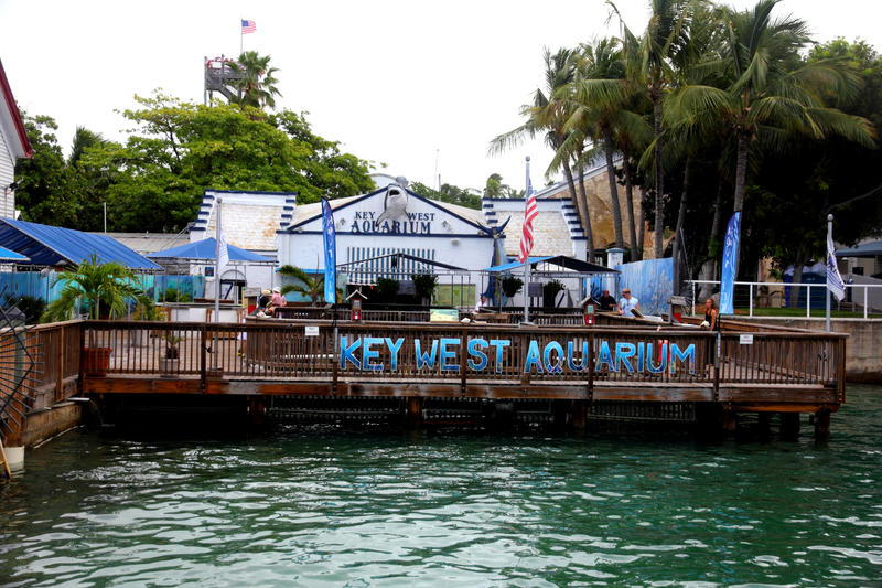 Key West Aquarium By Rbnsncrs On Deviantart