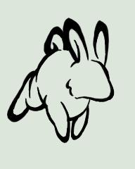 Tribal Rabbit 2 by Izumi-Kage