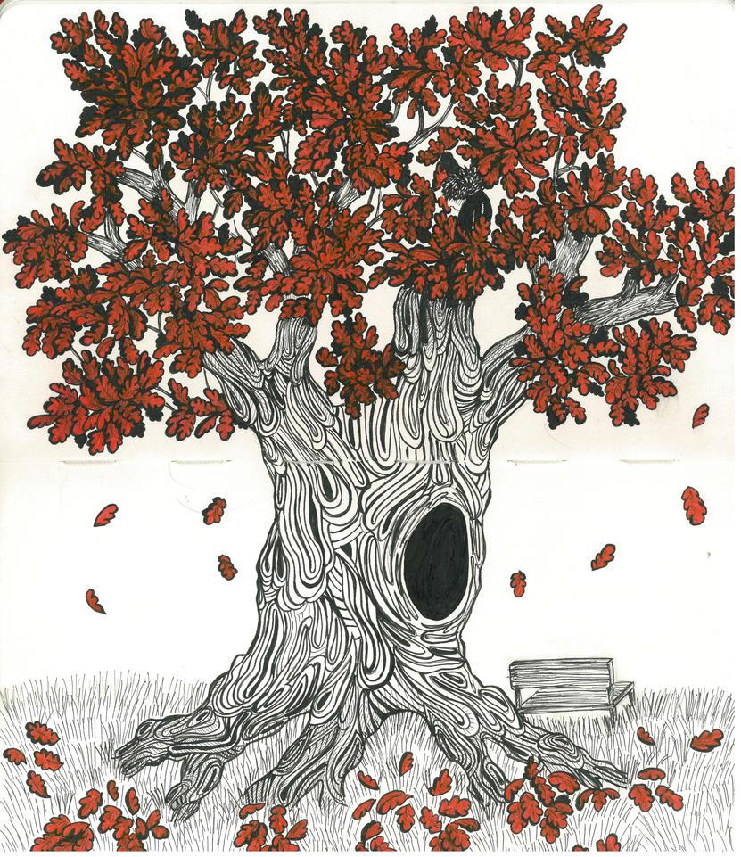 Red oak by Amaneser