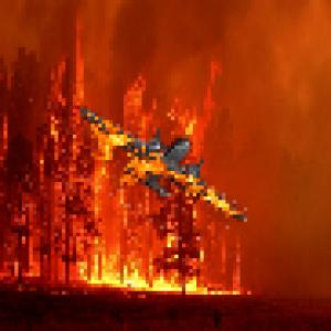 Phoenix3dart's Profile Picture