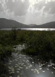 Lake talks