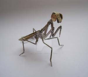 Mechanical Mantis No 4