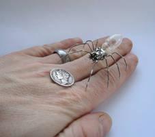 Spider No 22 (II) by AMechanicalMind