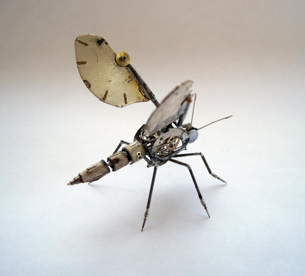 A Mechanical Gnat (II) by AMechanicalMind