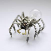 Spider No 24