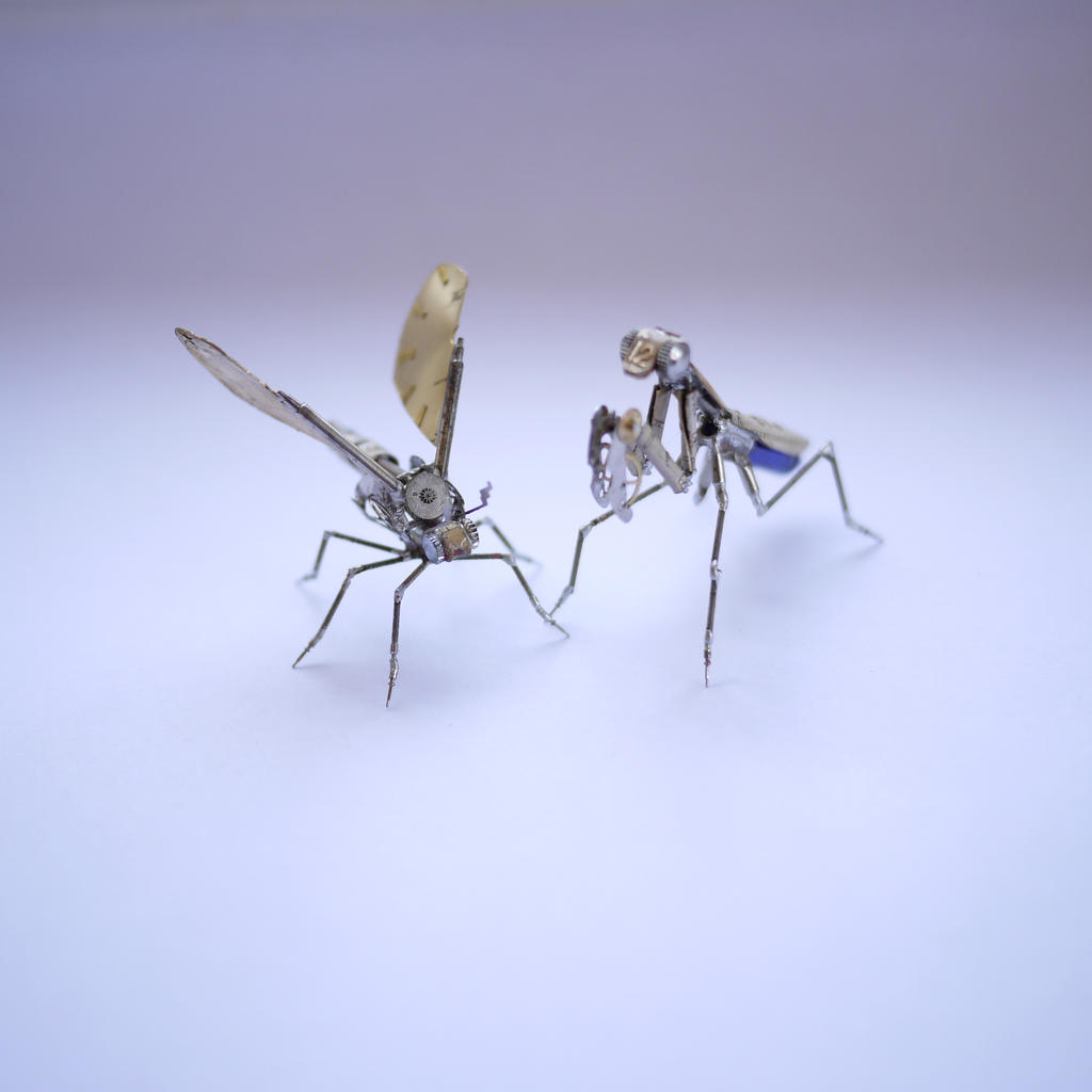 Mechanical Mantis No 7 and Gnat No 2 by AMechanicalMind