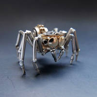 Watch Parts Jumping Spider No 1 (II) by AMechanicalMind