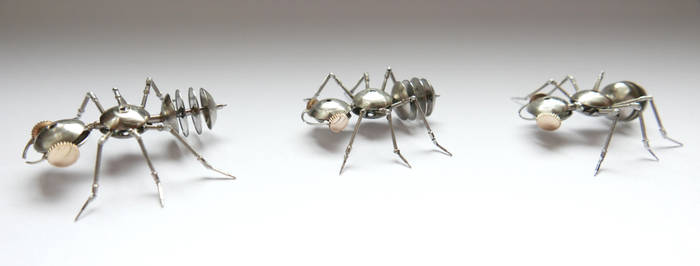 Watch Parts Ants Marching