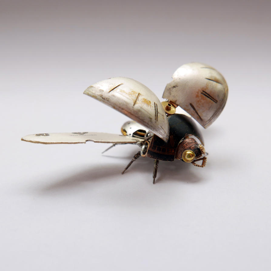 Watch Parts Beetle No 2 (I) by AMechanicalMind