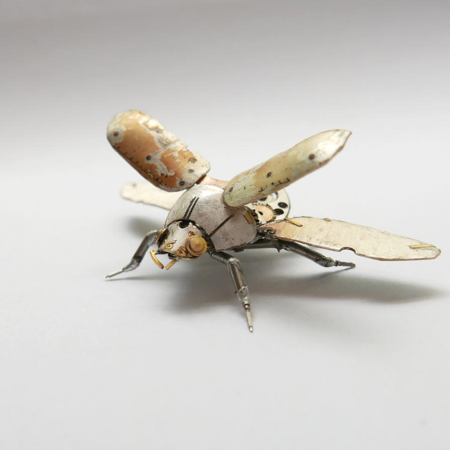 Watch Parts Beetle No 3 (I) by AMechanicalMind