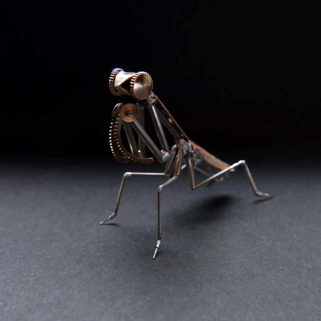 Watch Parts Mantis No 48 by AMechanicalMind