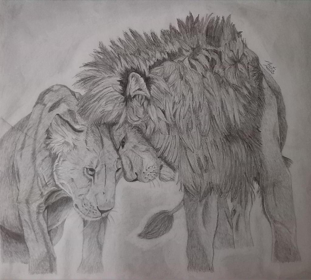 Lion And Lioness By ElizabetaGreenleaf On DeviantArt