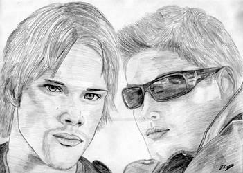 Sam and Dean by RedChameleon