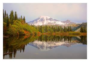 Autumn Clarity