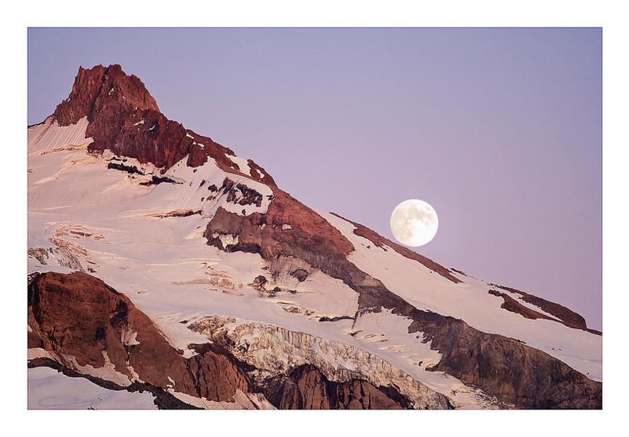 Purple Awakenings by hikester