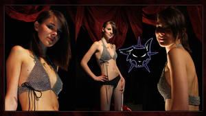 Claudias bikinitop
