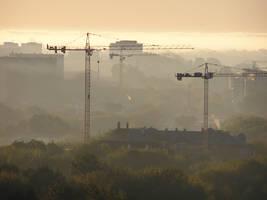 cranes by Caltha-stock