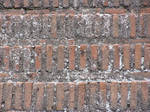 bricks 15 by Caltha-stock