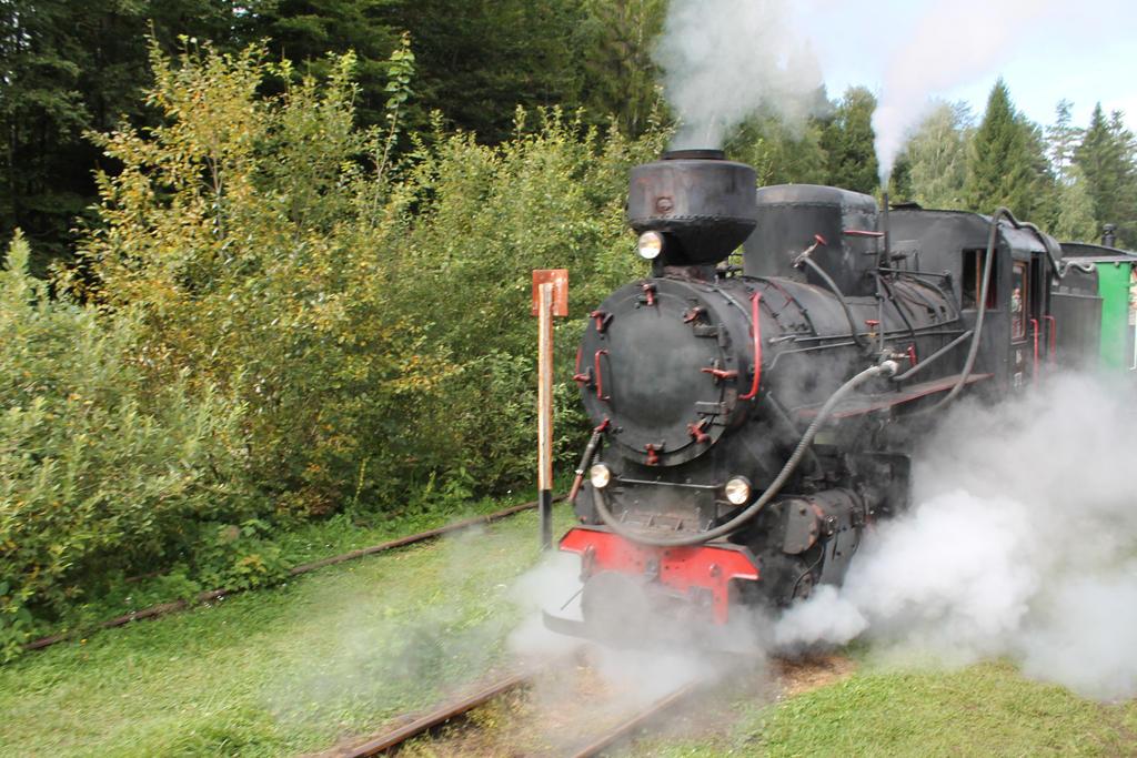 Train 03 by Caltha-stock