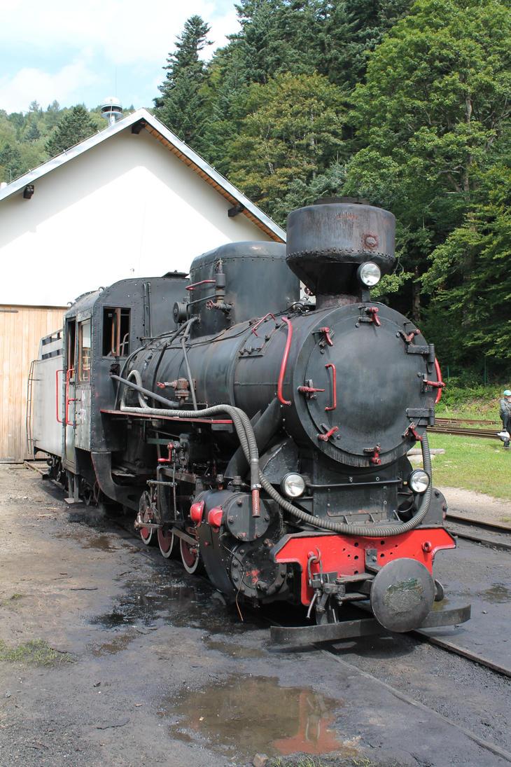 Train 04 by Caltha-stock