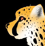 Cheetah by KailoCakes