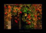 Autumns Doorway