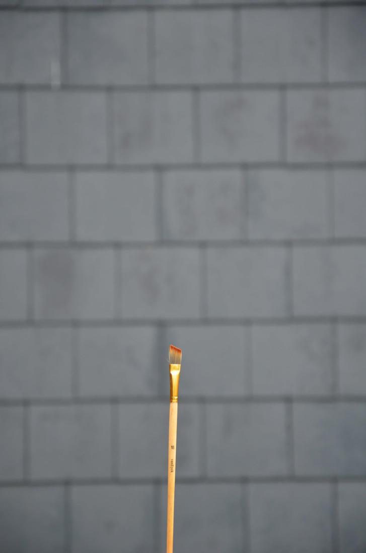 Brush by blackdahliah