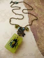 Beetle specimen necklace by janedean