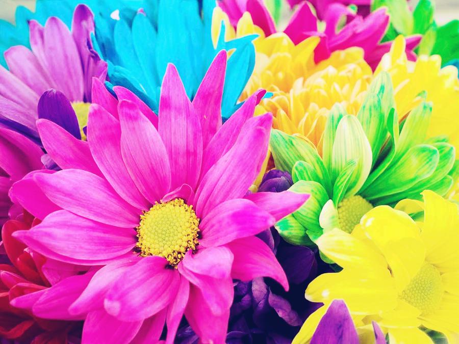 neon-flower-wallpaper