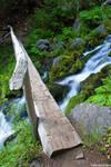 footbridge in mt. rainier