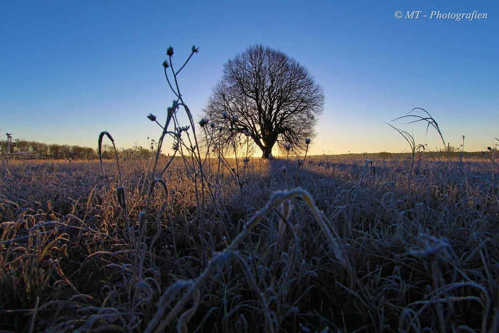 Sunrise on a beautiful frosty winter day 5 by MT-Photografien