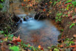 beautiful water sources in autumn 2